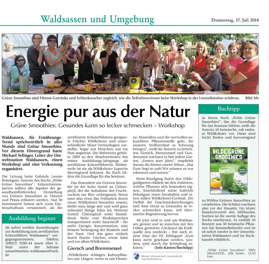 Bericht DnT Workshop Grüne Smoothies - Energie pur aus der Natur