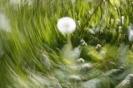 Bilder von den Teilnehmern am Fotoworkshop Lightpainting_8
