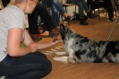 Seminar Tiergestützte Pädagogik und Therapie_23