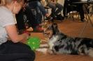 Seminar Tiergestützte Pädagogik und Therapie_24