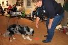 Seminar Tiergestützte Pädagogik und Therapie_31