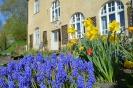 Kloster- und Naturerlebnisgarten im April 2017_4