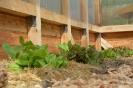 Kloster- und Naturerlebnisgarten im Mai_5