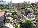 Garten im April der Umweltstation Waldsassen