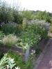 Garten im Juli der Umweltstation Waldsassen